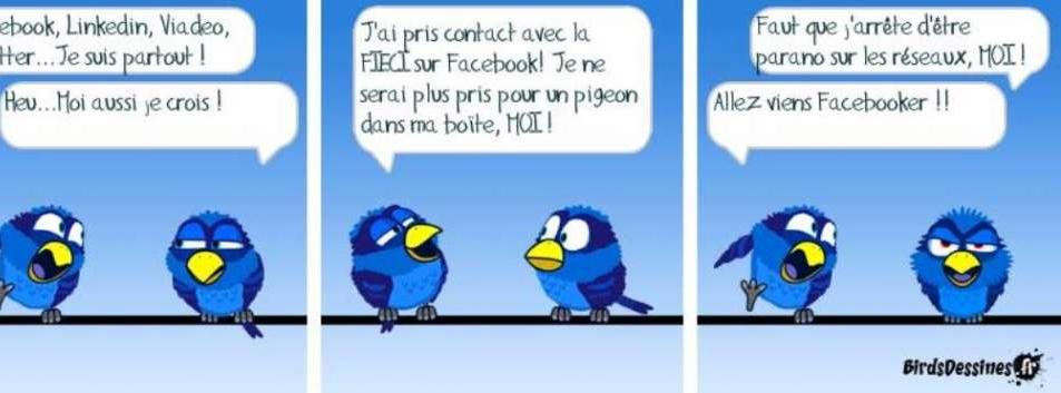 contact_cfecgc@yahoo.fr